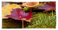 Fallen Leaves And Mushrooms Beach Towel