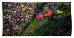 Beach Towel featuring the photograph Fallen Leaves On The Limberlost Trail by Lori Coleman