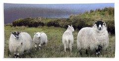 Family Of Sheep Beach Towel