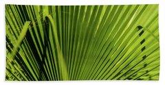 Fan Palm View 2 Beach Towel