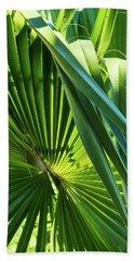 Fan Palm View 3 Beach Towel