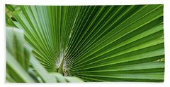 Fan Palm View 4 Beach Towel