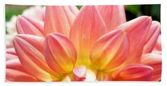 Fanned Out Petals Beach Towel