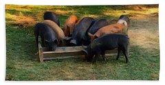 Farmyard Pigs Beach Towel