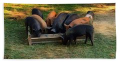 Farmyard Pigs Beach Sheet