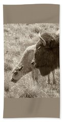 Beach Sheet featuring the photograph Father And Baby Buffalo by Rebecca Margraf