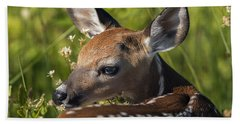 Fawn Over The Shoulder Beach Towel