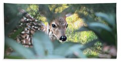 Fawn Peeking Through Bushes Beach Towel