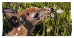 Fawn Smelling The Wildflowers Beach Towel