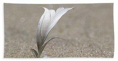 Feather Port Jefferson New York Beach Sheet
