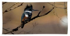 Female Belted Kingfisher Beach Towel by Ernie Echols