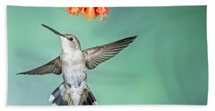 Female Black-chinned Hummingbird Beach Towel