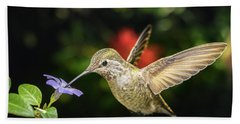 Beach Towel featuring the photograph Female Hummingbird And A Small Blue Flower Left Angled View by William Lee