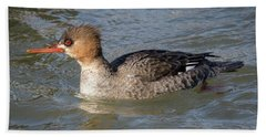 Beach Towel featuring the photograph Female Red-breasted Merganser by Ricky L Jones