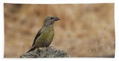 Female Red Crossbill Beach Towel by Doug Lloyd