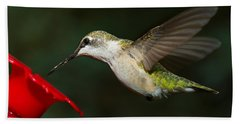 Beach Towel featuring the photograph Female Ruby-troated Hummingbird by Robert L Jackson