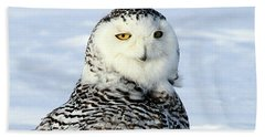 Female Snowy Owl Beach Towel
