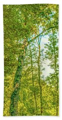 Beach Towel featuring the photograph Female Tree.  by Leif Sohlman