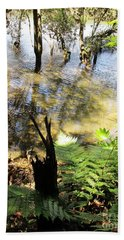 Fern Amidst The Mangroves Beach Sheet by Dianne  Connolly