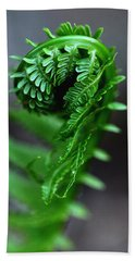 Fern Frond Beach Towel