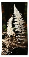 Beach Towel featuring the photograph Fern Glow 2 by William Selander