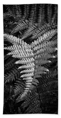 Fern In Black And White Beach Sheet