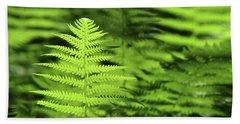 Ferns Stony Brook New York Beach Sheet by Bob Savage