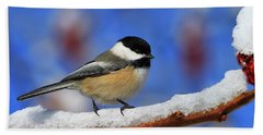 Beach Towel featuring the photograph Festive Chickadee by Tony Beck
