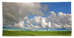 Beach Towel featuring the photograph Field by Charuhas Images