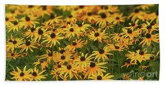 Field Of Black-eyed Susans Beach Sheet