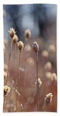 Field Of Dried Flowers In Earth Tones Beach Sheet