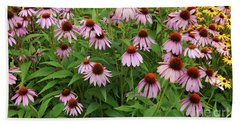 Field Of Echinacea Beach Sheet