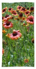 Field Of Flower Eyes Beach Sheet