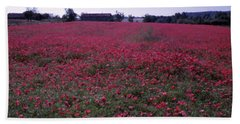 Field Of Poppies, France Beach Towel