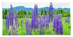 Beach Towel featuring the photograph Field Of Purple by Greg Fortier