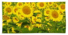Field Of Sunflowers Beach Sheet