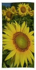 Field Of Sunflowers Beach Towel