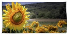 Beach Towel featuring the photograph Field Of Sunflowers by Jim DeLillo