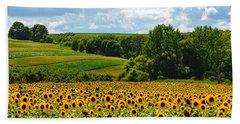 Field Of Sunflowers Beach Sheet