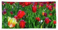 Beach Towel featuring the photograph Tulip Garden by D Davila
