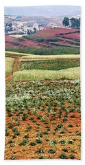 Fields Of The Redlands - 2 Beach Towel