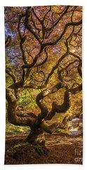 Fiery Fall Colors Tree Of Life Beach Sheet
