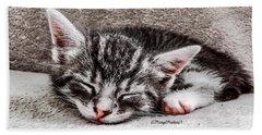 Finally Asleep  Copyright Mary Lee Parker 17  Beach Towel