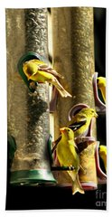 Finch Feeding Frenzie Beach Towel