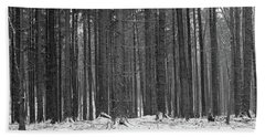 Beach Towel featuring the photograph Ways In A Dark Woods by Dubi Roman