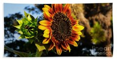 Fire In The Garden Beach Towel by Angela J Wright