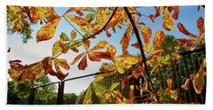 Beach Towel featuring the photograph Fire Leaves by Tgchan