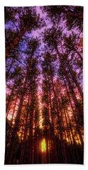 Fire Sky - Sunset At Retzer Nature Center - Waukesha Wisconsin Beach Towel by Jennifer Rondinelli Reilly - Fine Art Photography