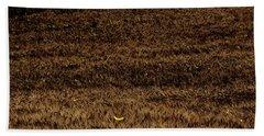Fireflies And Wheat Beach Sheet