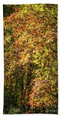 Fires Of Autumn Beach Towel by Judy Wolinsky